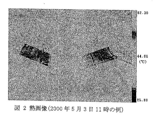 熱画像(2000年5月3日11時の例)